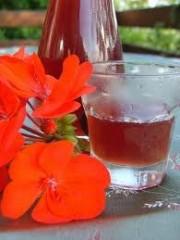 Liquore di noccioli di Frutta.jpg