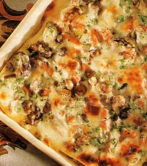 a lasagne vegetariane veloci.jpg