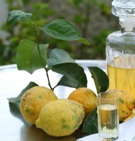 limoni alla grappa