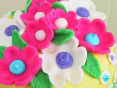 torta decorata con marshmallow fondant.jpg3.jpg